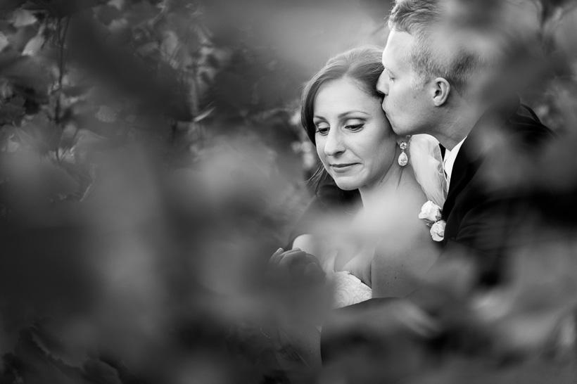 Magnetic Hill Winery Wedding Veronique Amp Brian Moncton Photographer 187 Philip Boudreau